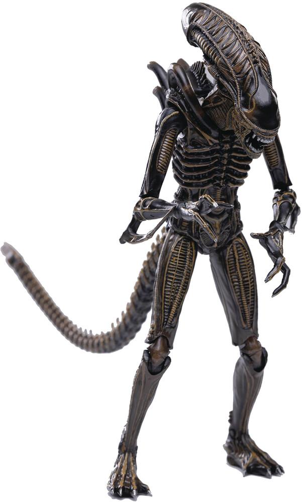Hiya Toys - Hiya Toys - Aliens Brown Alien Warrior PX 1/18 Scale Figure