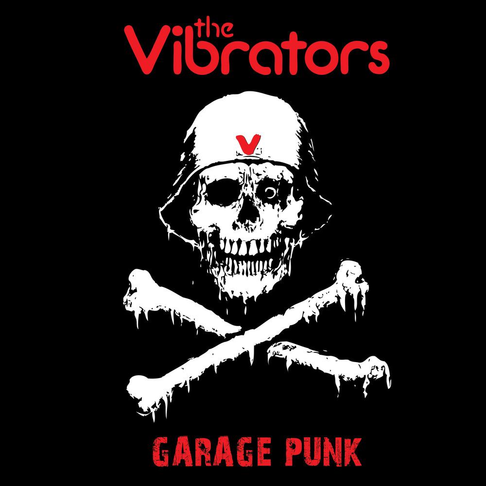 Vibrators - Garage Punk [Colored Vinyl] [Limited Edition] (Pnk)