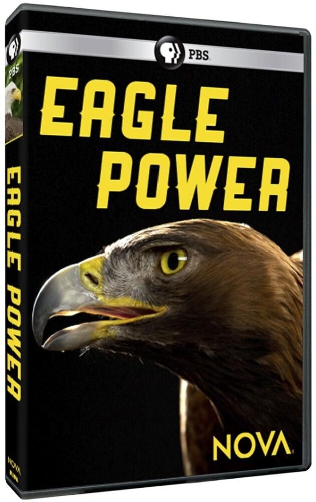 - Nova: Eagle Power