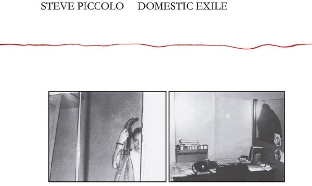 Steve Piccolo - Domestic Exile