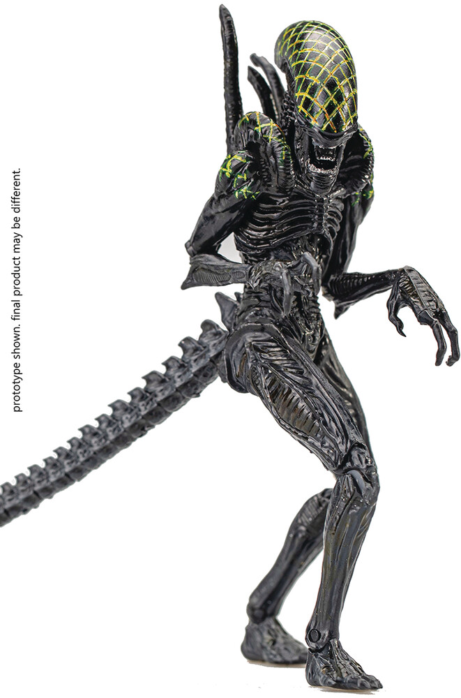 Hiya Toys - Hiya Toys - AVP Grid Alien PX 1/18 Scale Figure