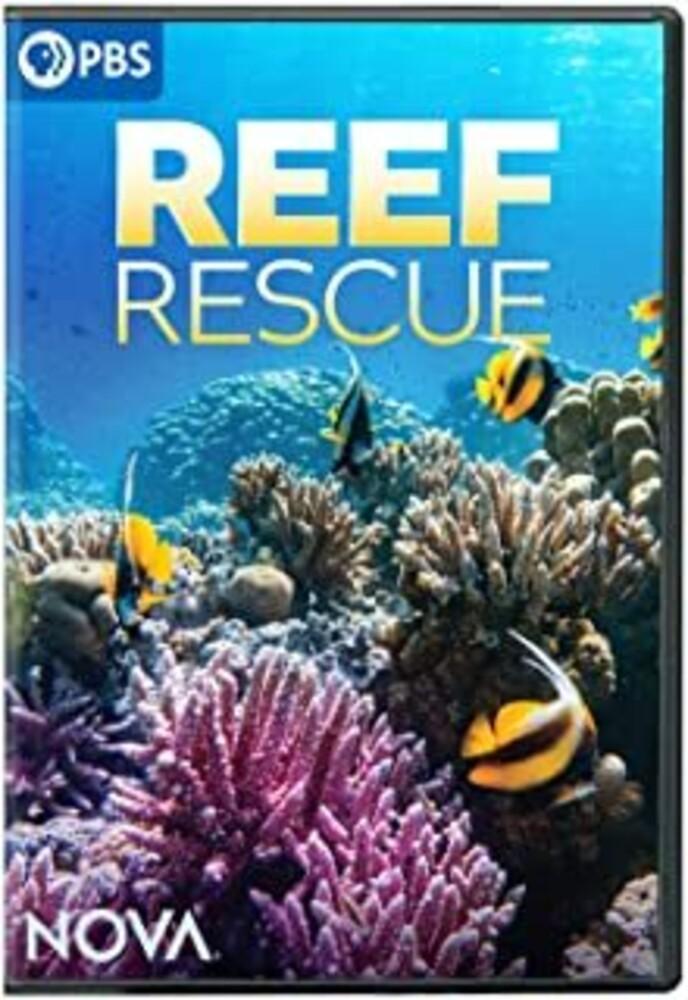 - Nova: Reef Rescue