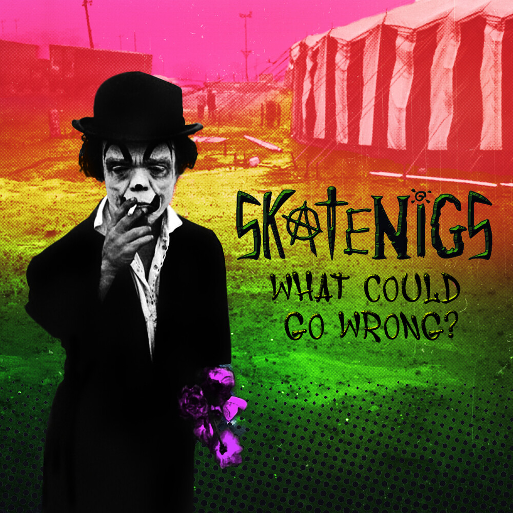 Skatenigs - What Could Go Wrong