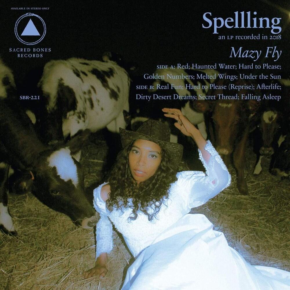 SPELLLING - Mazy Fly