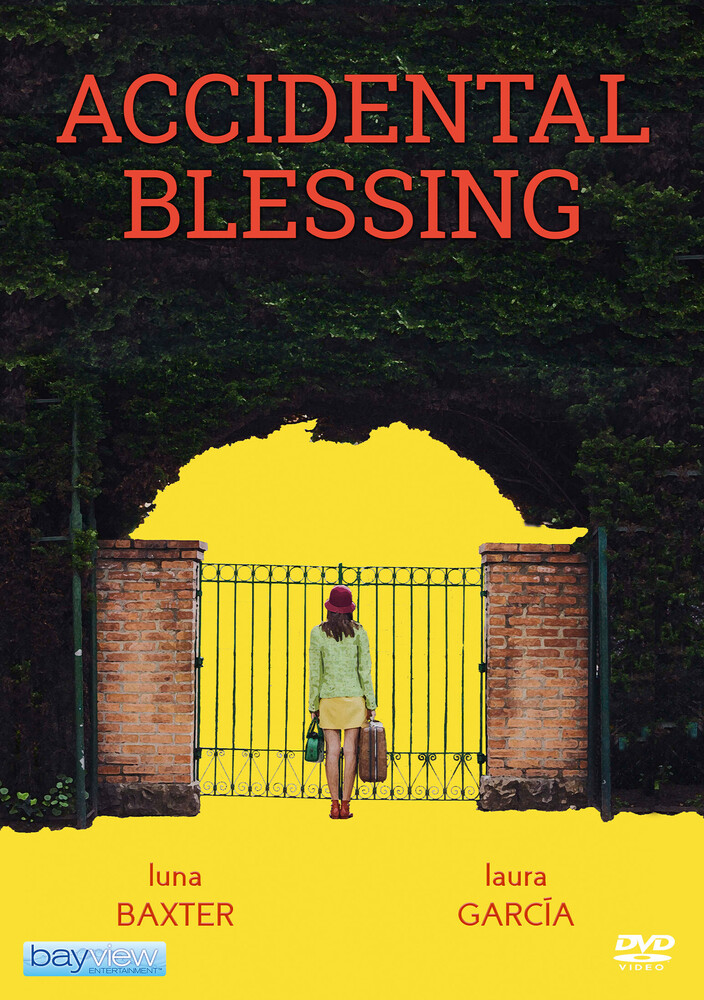 Accidental Blessing - Accidental Blessing
