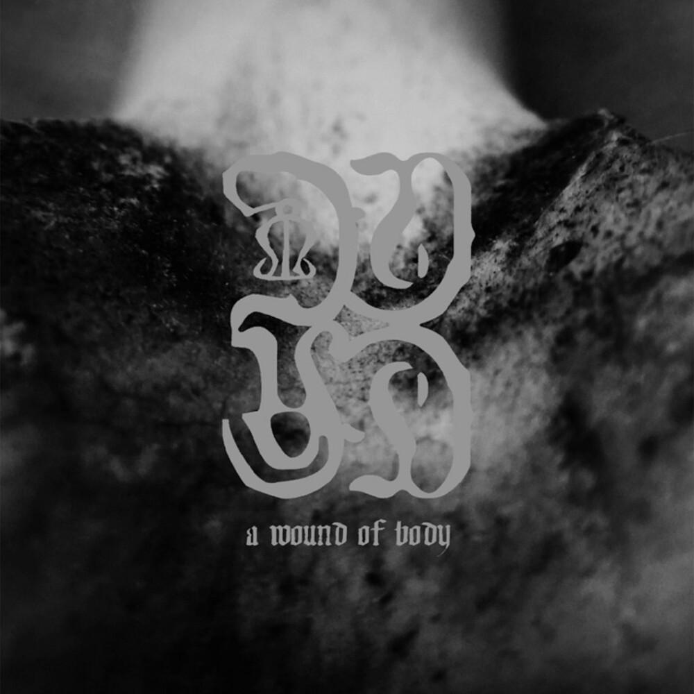 Common Eider / King Eider - Wound Of Body (Uk)