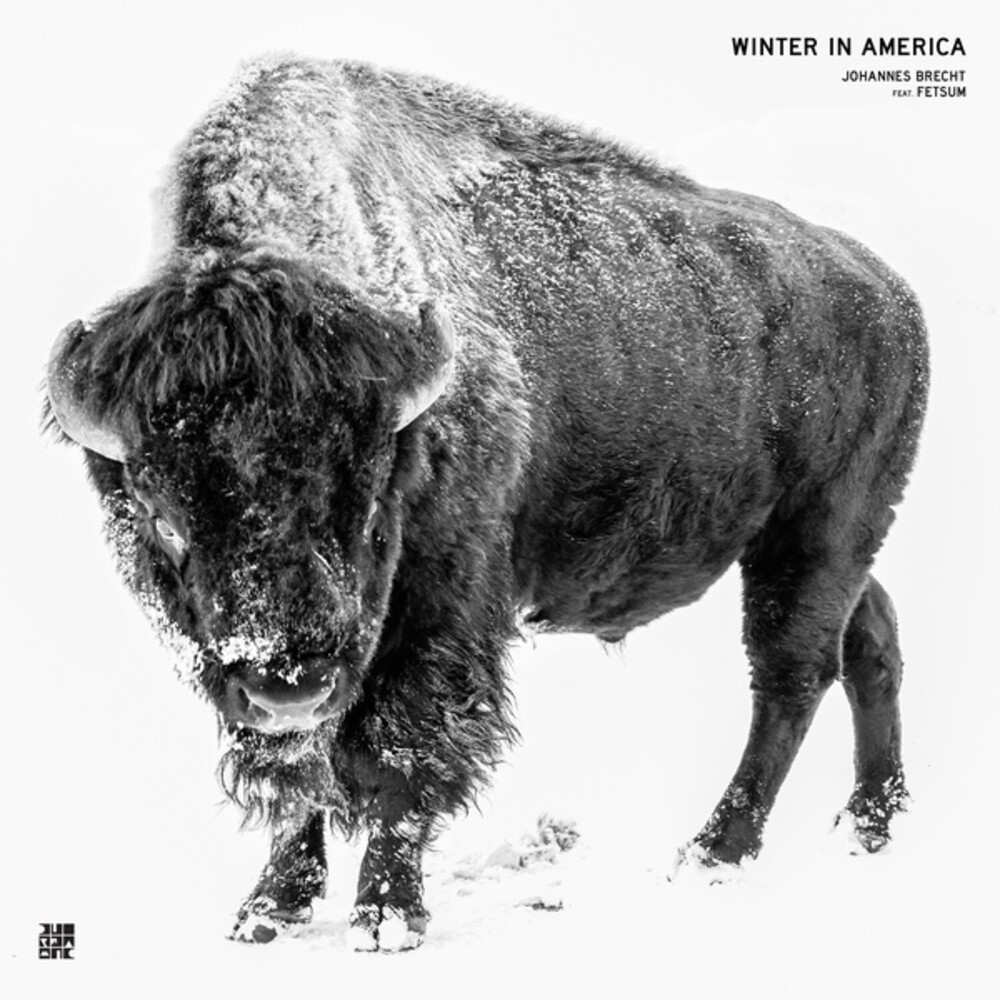 Johannes Brecht  / Fetsum - Winter In America