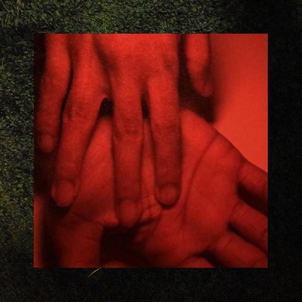 Rachika Nayar - Our Hands Against The Dusk