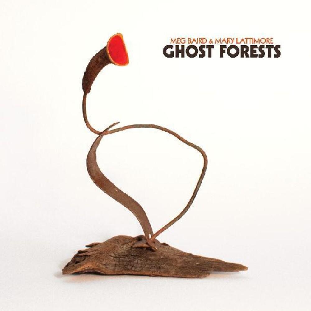 Meg Baird  / Lattimore,Mary - Ghost Forests [Clear Vinyl] (Aus)