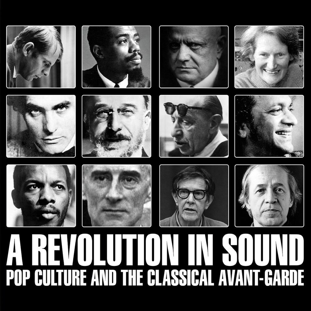 Revolution In Sound: Pop Culture & Classical Avant - Revolution In Sound: Pop Culture & Classical Avant