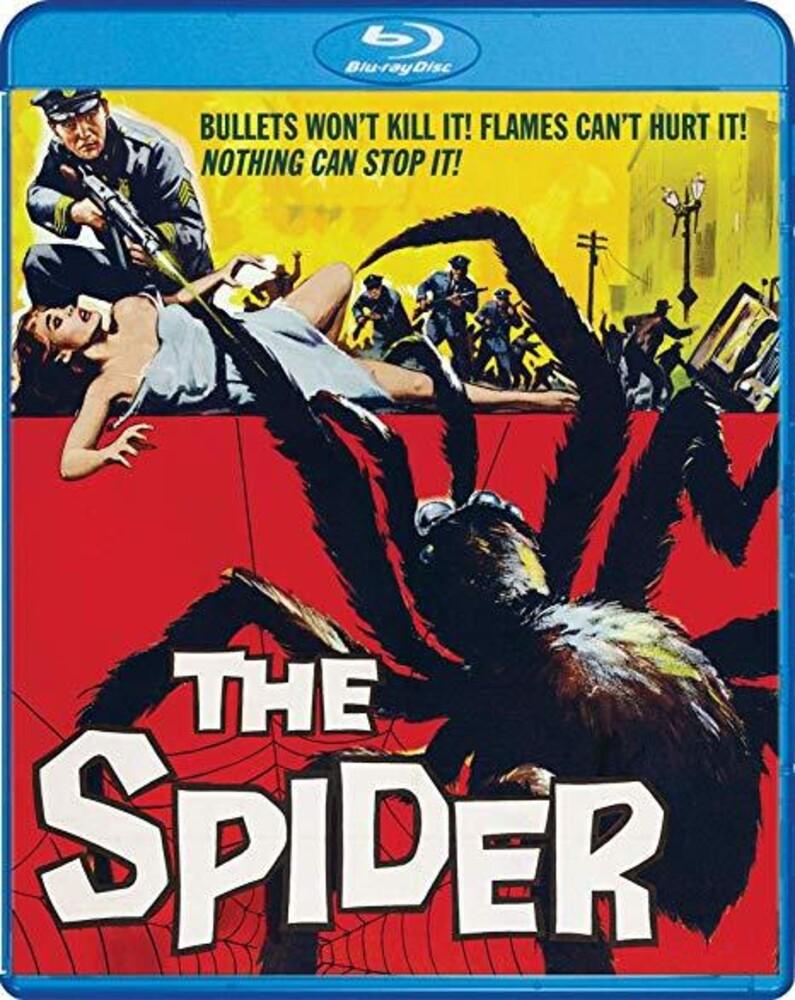 - Spider / (Dts Mono Ws)