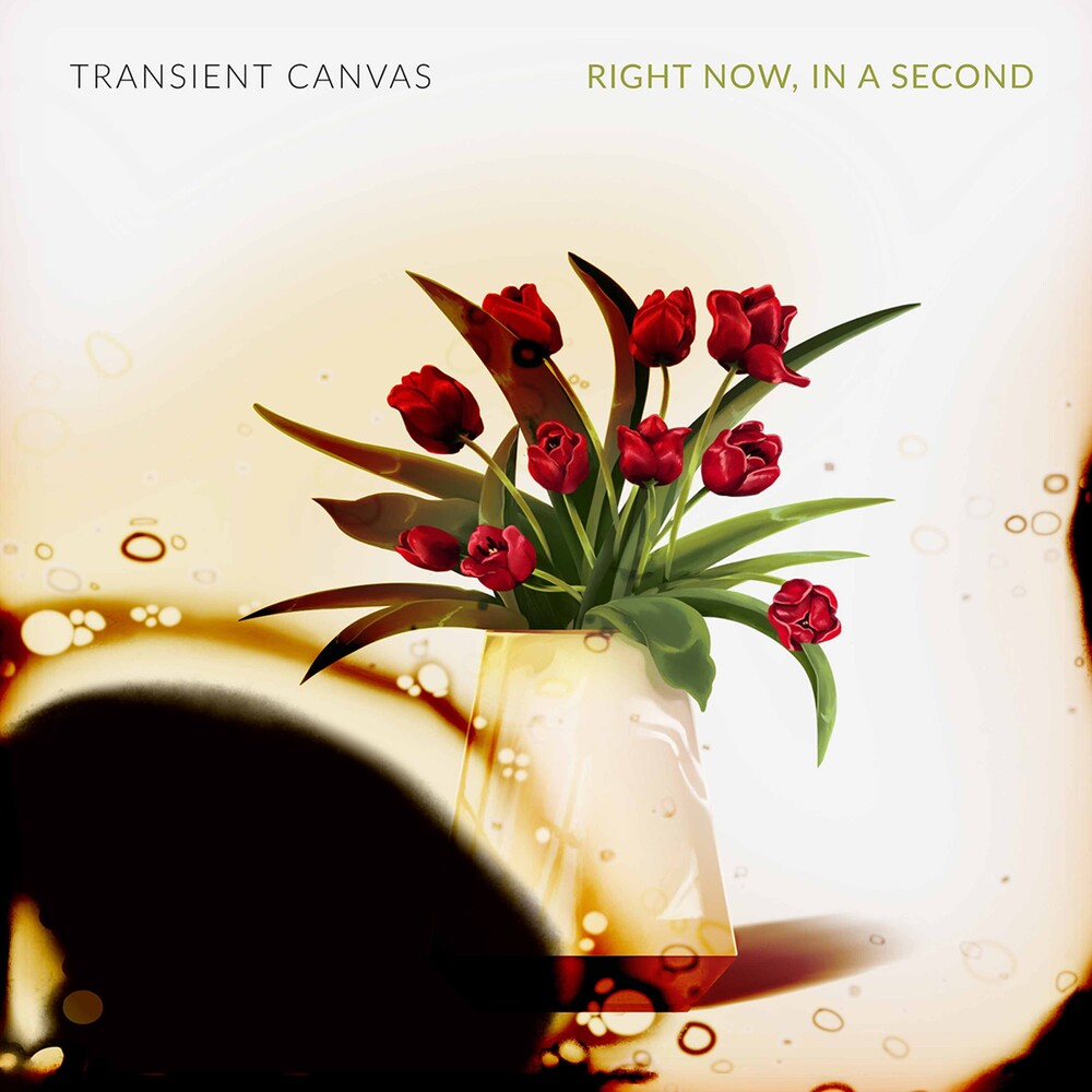 Transient Canvas - Right Now In A Second