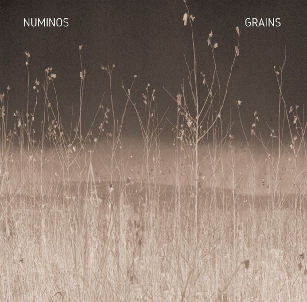 Numinos - Grains