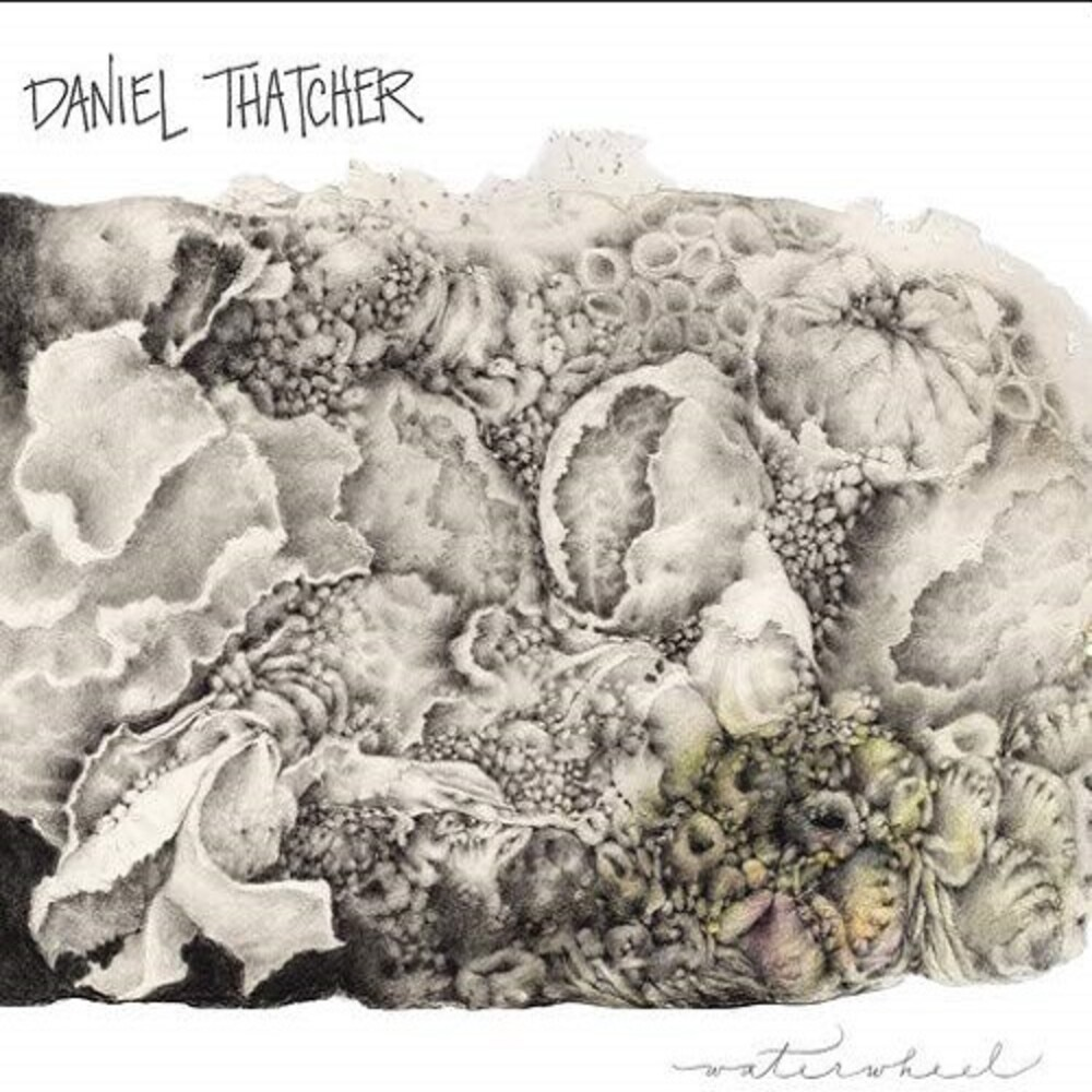 Daniel Thatcher - Waterwheel