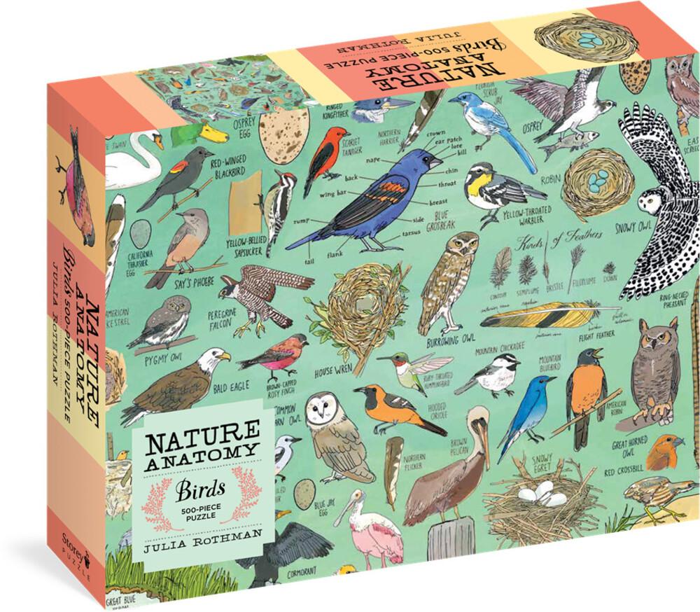 - Nature Anatomy Birds Puzzle A 500 Piece Jigsaw