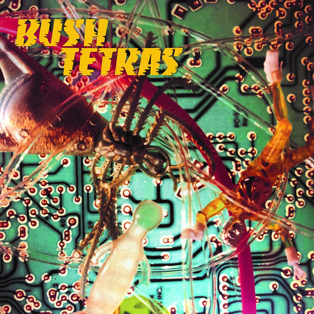Bush Tertas - There Is A Hum / Seven Years [Vinyl Single]