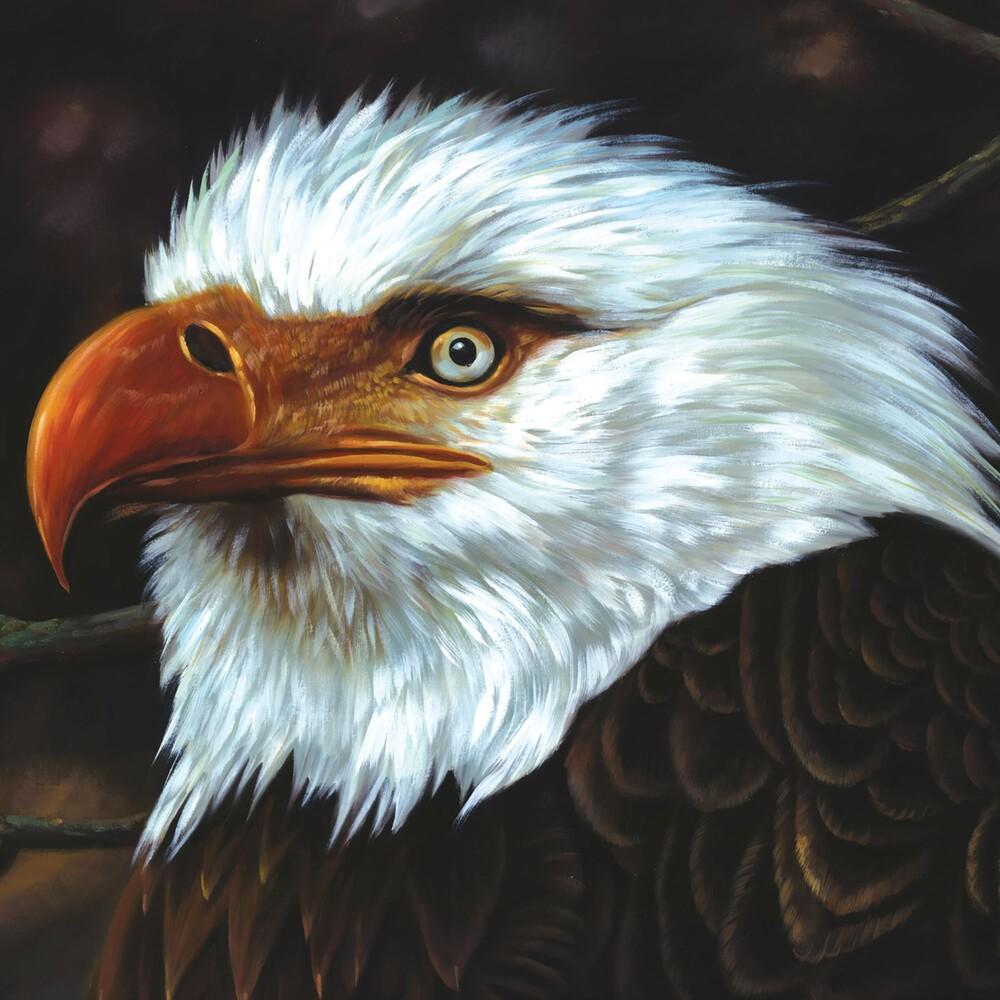 Mogwai - Hawk Is Howling
