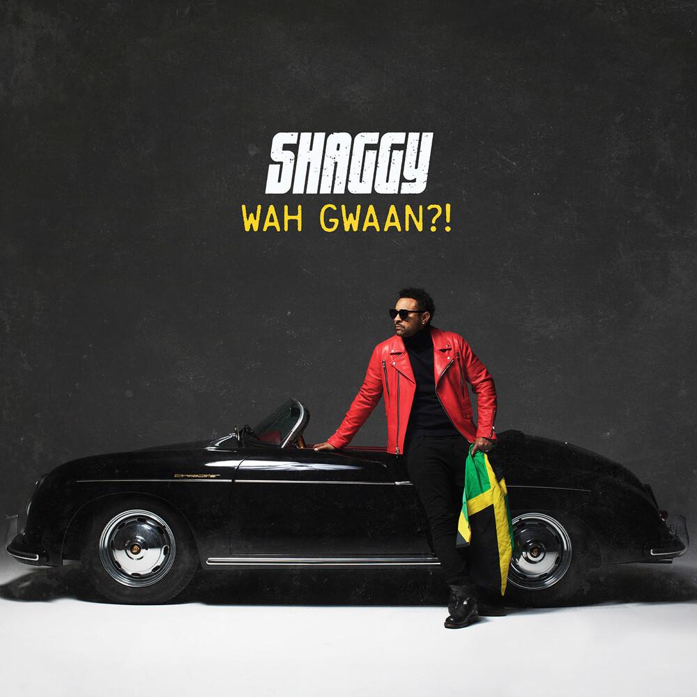 Shaggy - Shaggy
