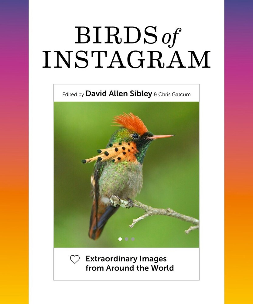 David Sibley  Allen - Birds Of Instagram (Hcvr)