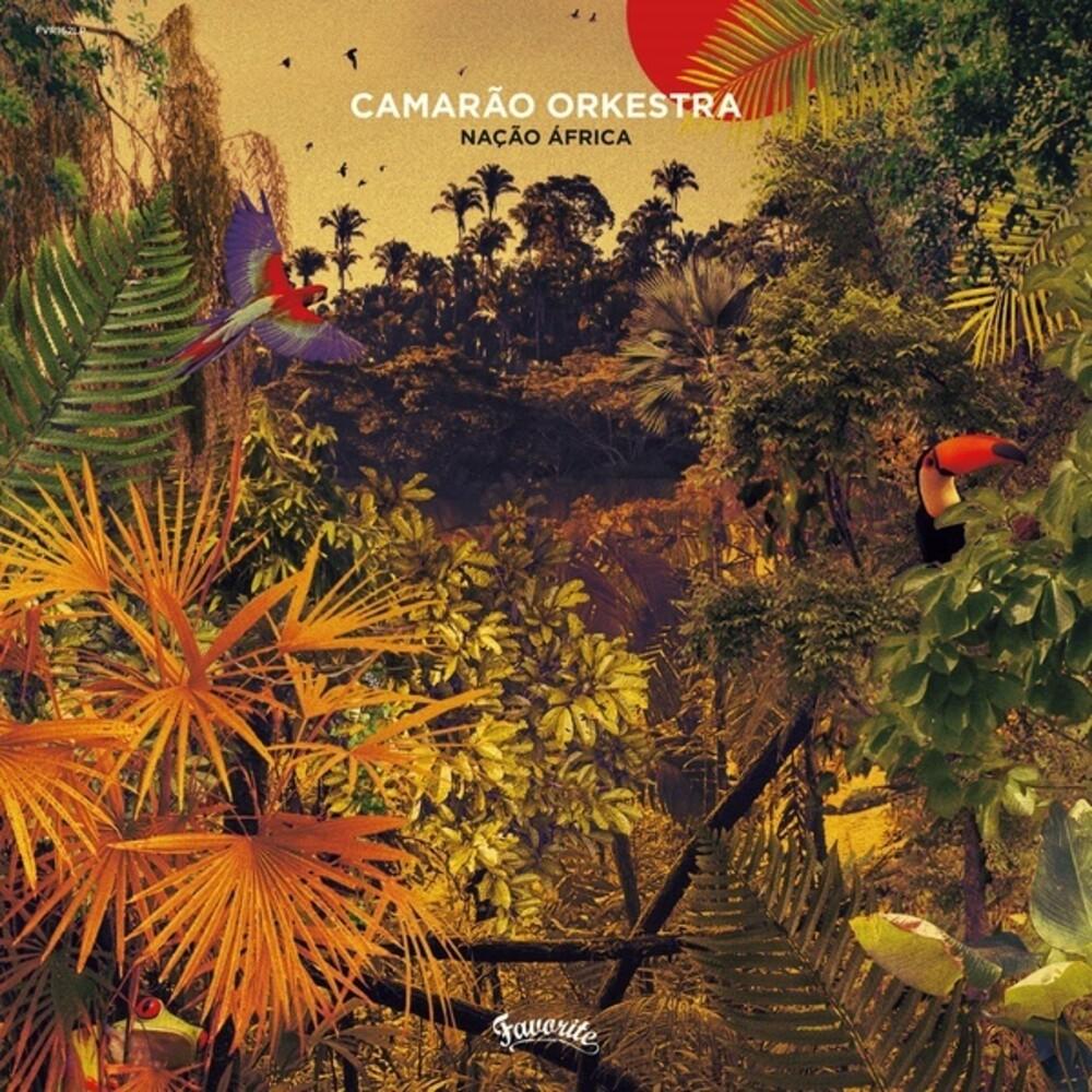 Camarão Orkestra - Nacao Africa