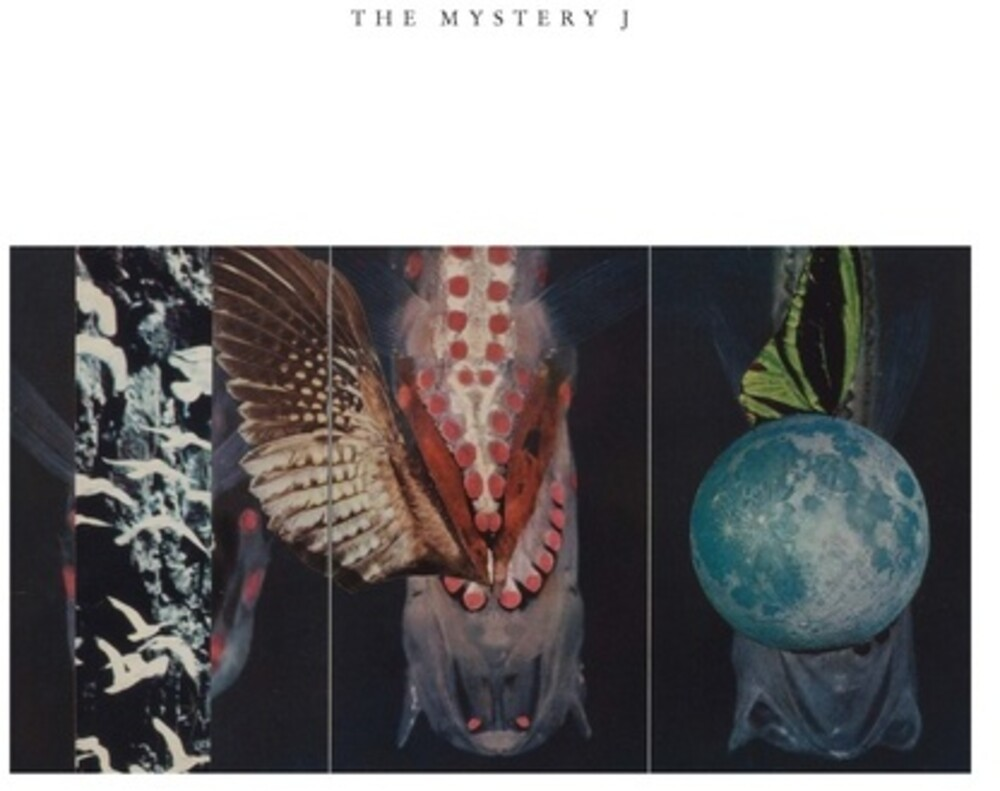 Joe Mcphee  / Paulson,Jen Clare / Labycz,Brian - Mystery J