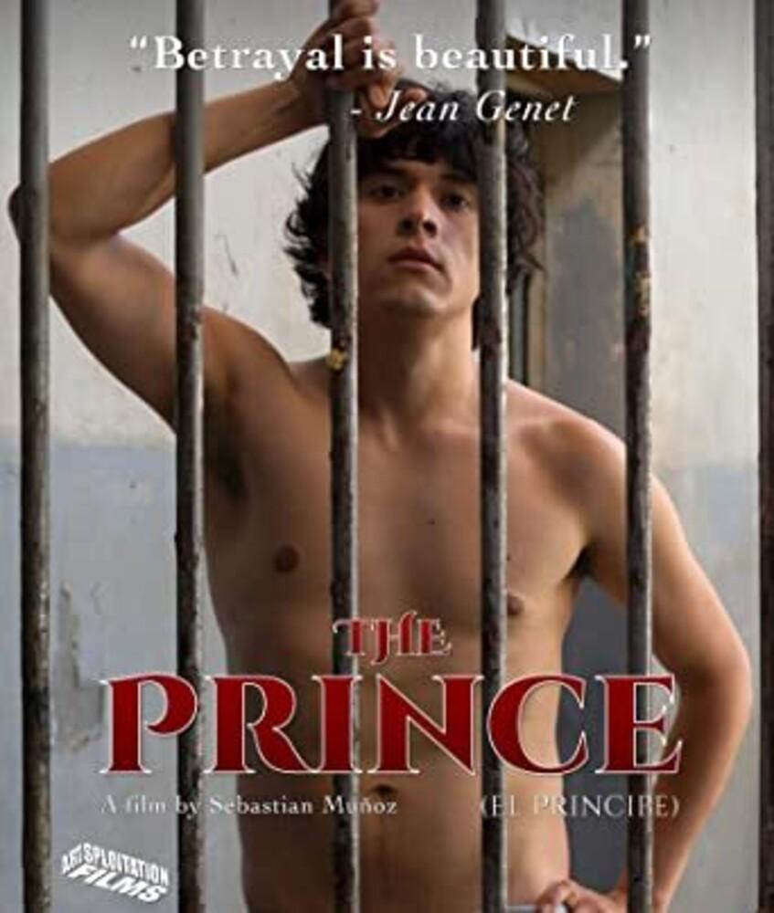 - Prince (2019)