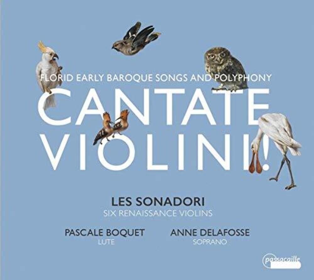 Cantate Violini / Various - Cantate Violini / Various
