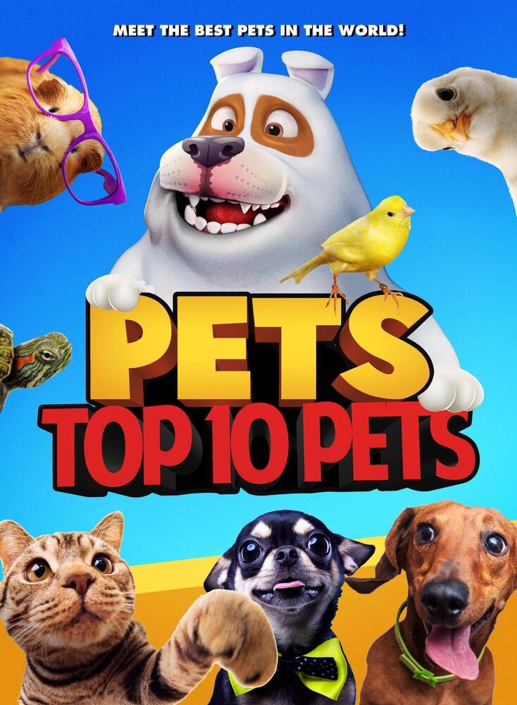 - Pets: Top 10 Pets