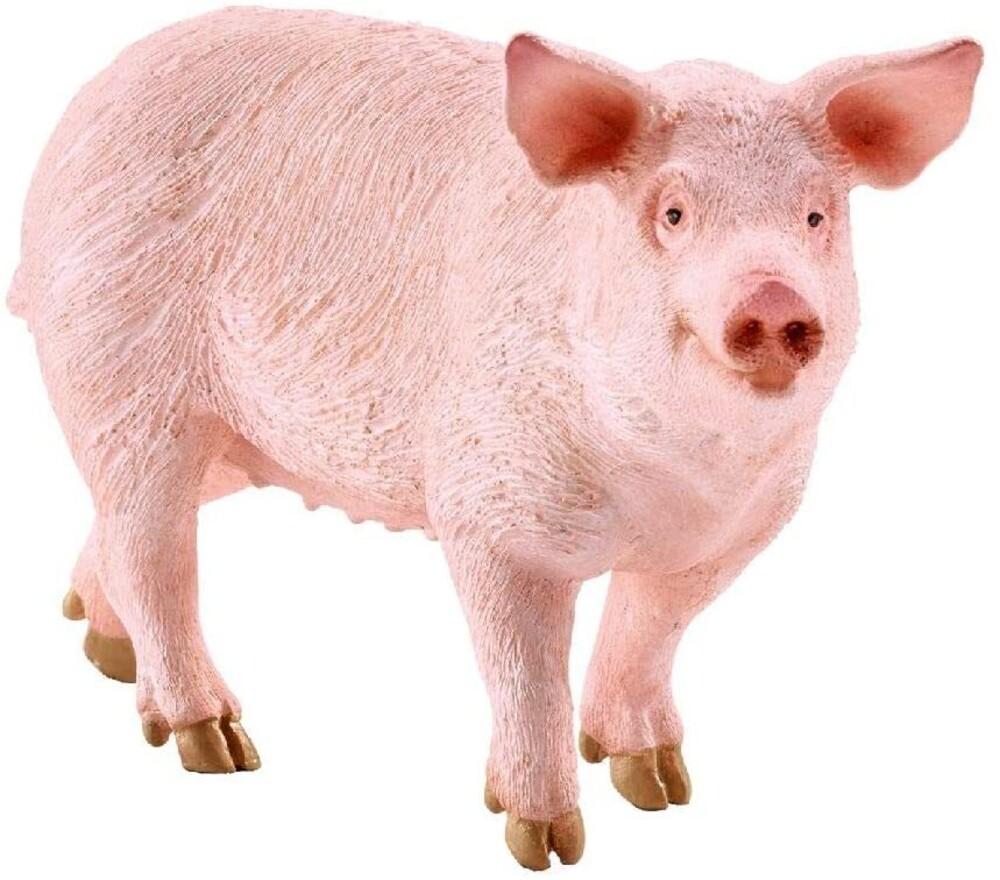 - Schleich Pig