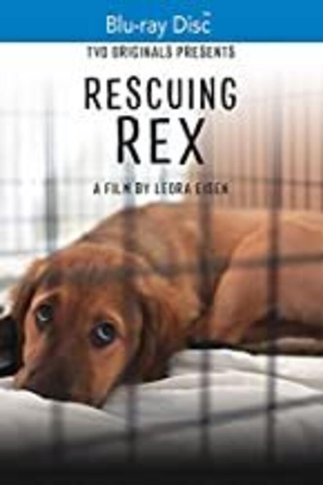 - Rescuing Rex