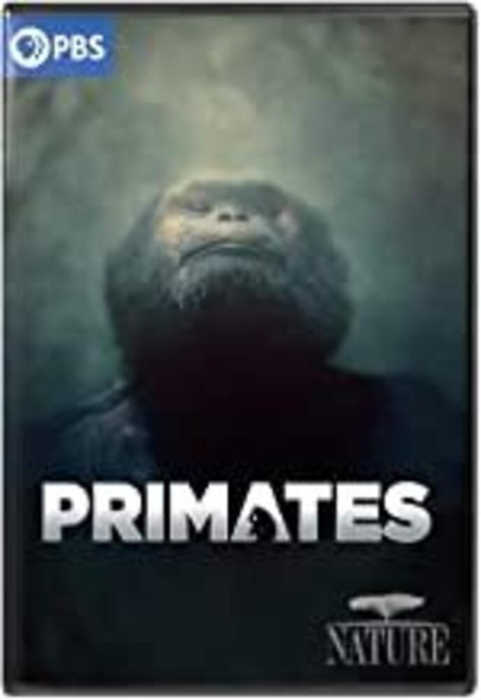 Nature: Primates - Nature: Primates