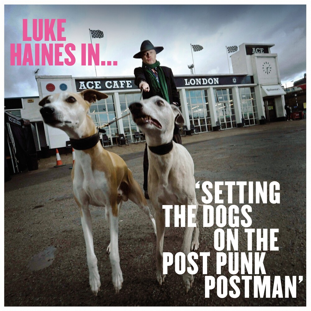 Luke Haines - Luke Haines In Setting The Dogs On The Post Punk