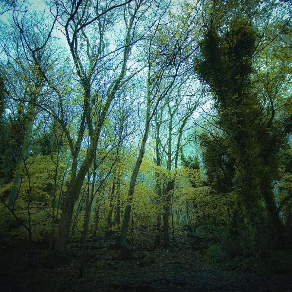 Worriedaboutsatan - Time Lapse [Transparent Forest Green LP]