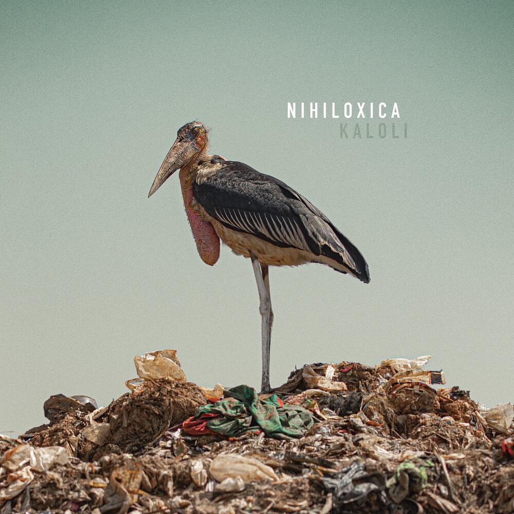 Nihiloxica - Kaloli (Aus)