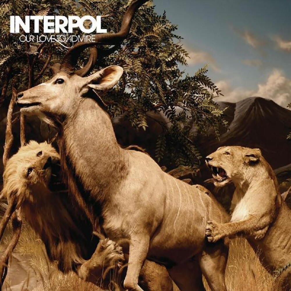 Interpol - Our Love To Admire (Gate)
