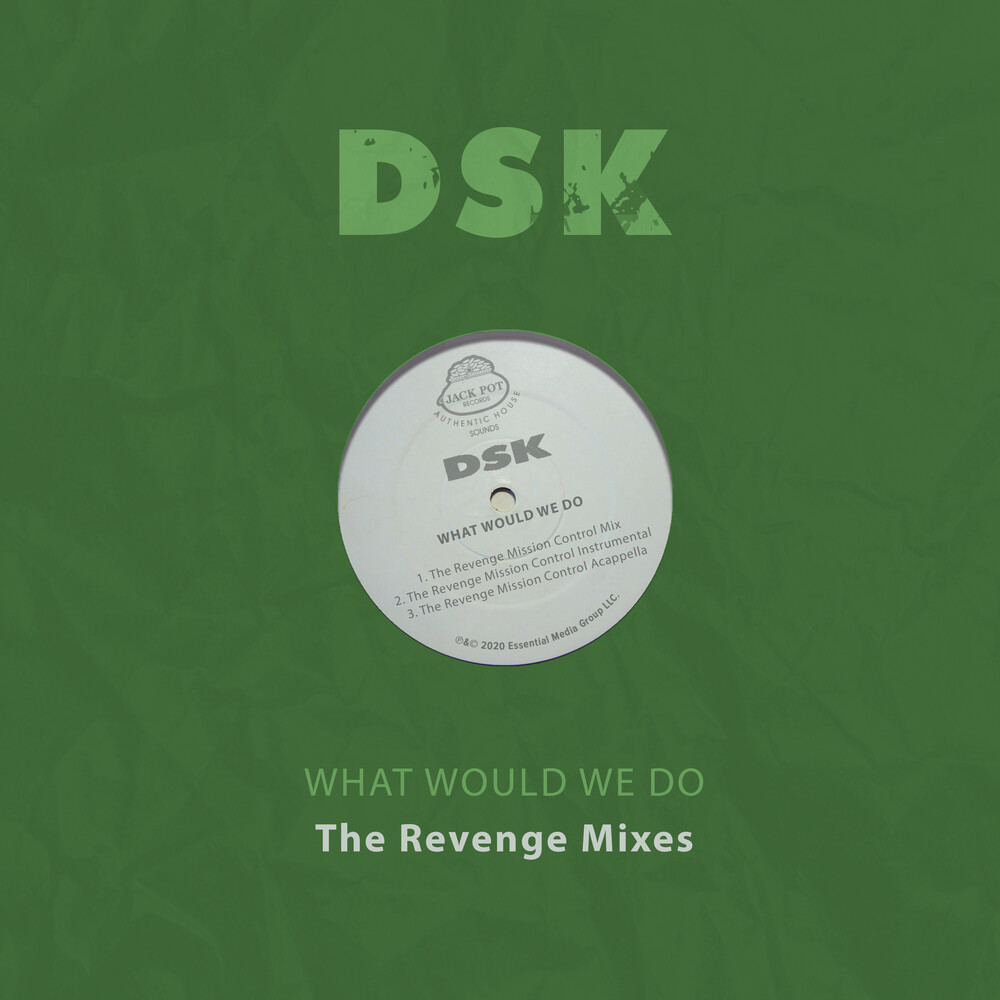 DSK - What Would We Do - The Revenge Mixes
