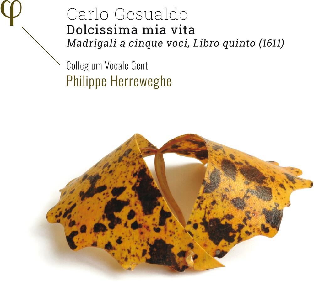 Gesualdo / Collegium Vocale Gent / Herreweghe - Dolcissima Mia Vita