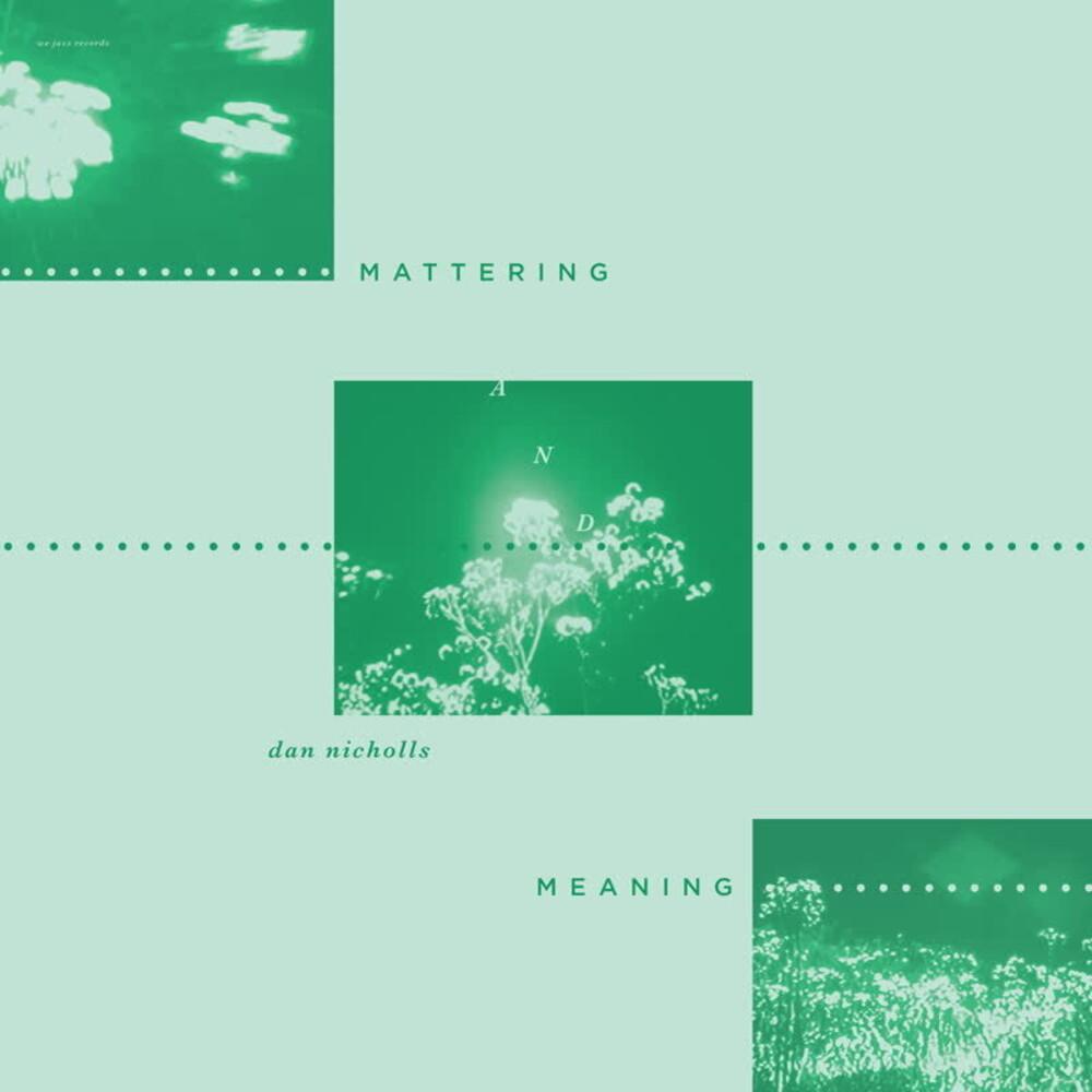 Dan Nicholls - Mattering & Meaning
