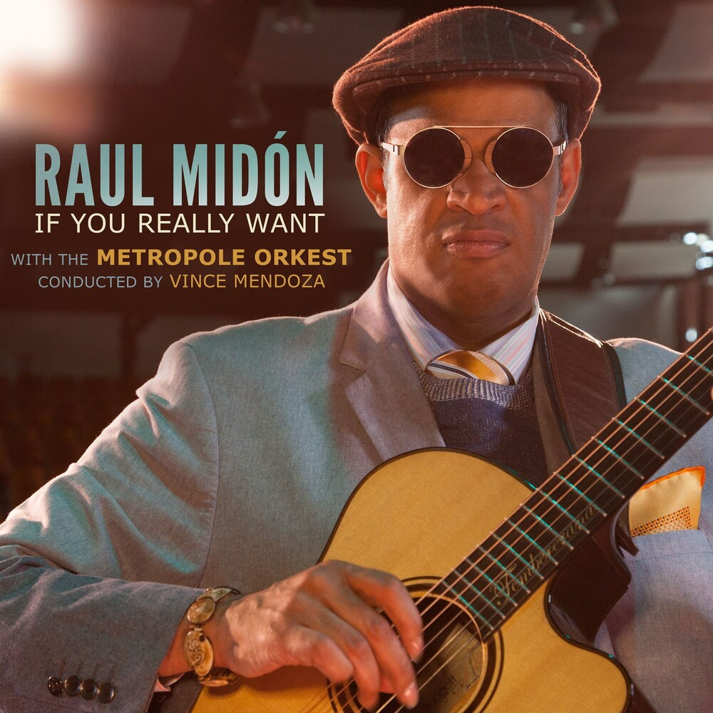 Raul Midon - If You Really Want