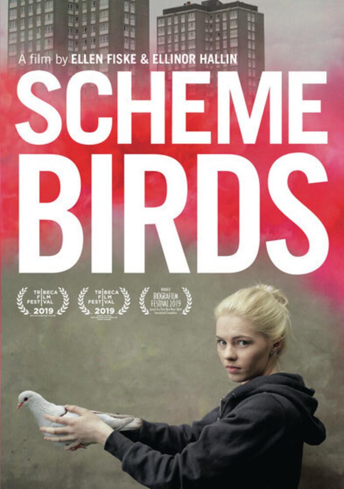 - Scheme Birds / (Mod Ac3)