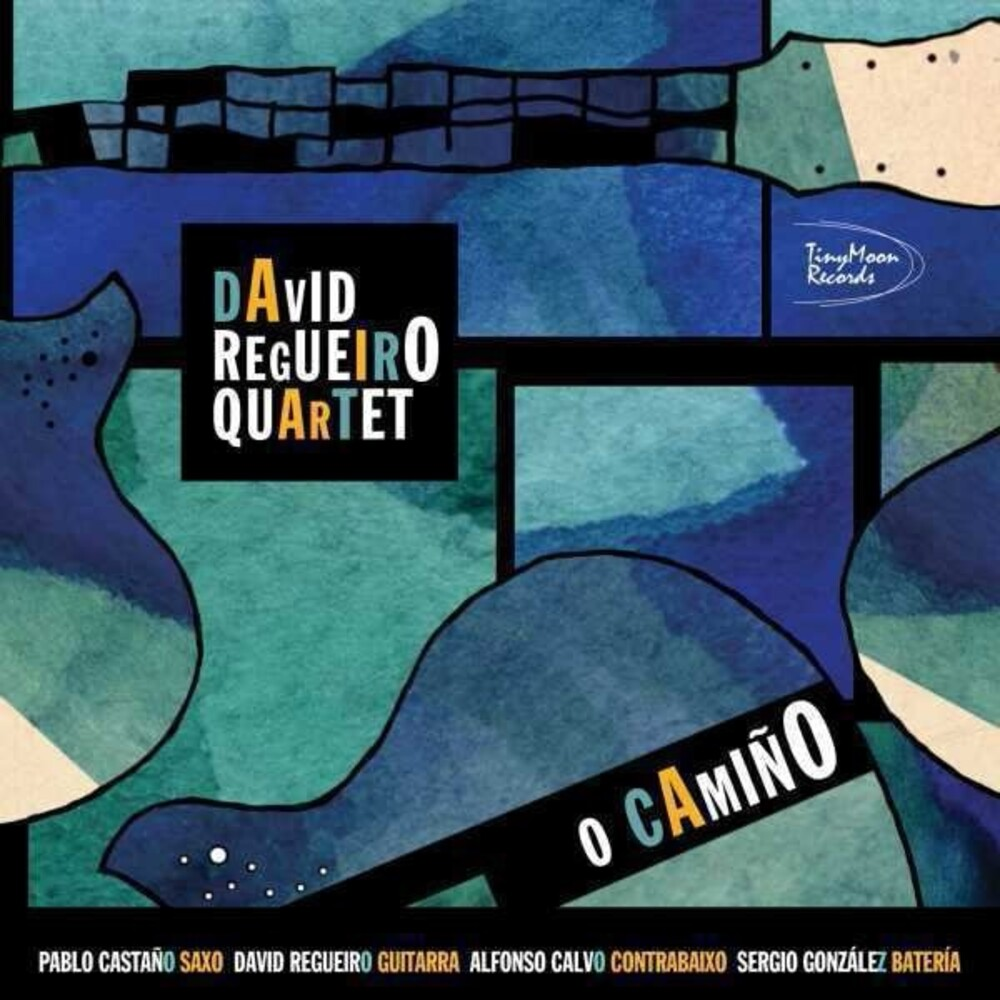 David Regueiro - O Camino (Spa)