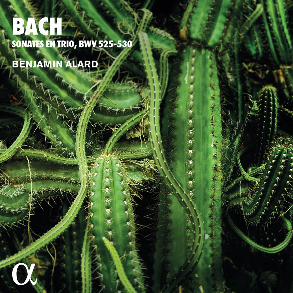 - Trio Sonatas for Organ