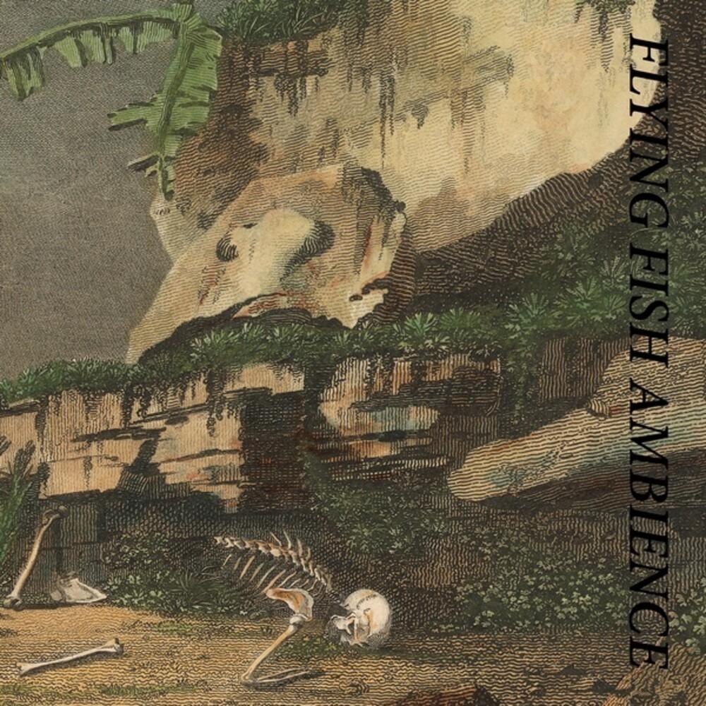 Rainforest Spiritual Enslavement - Flying Fish Ambience (2pk)