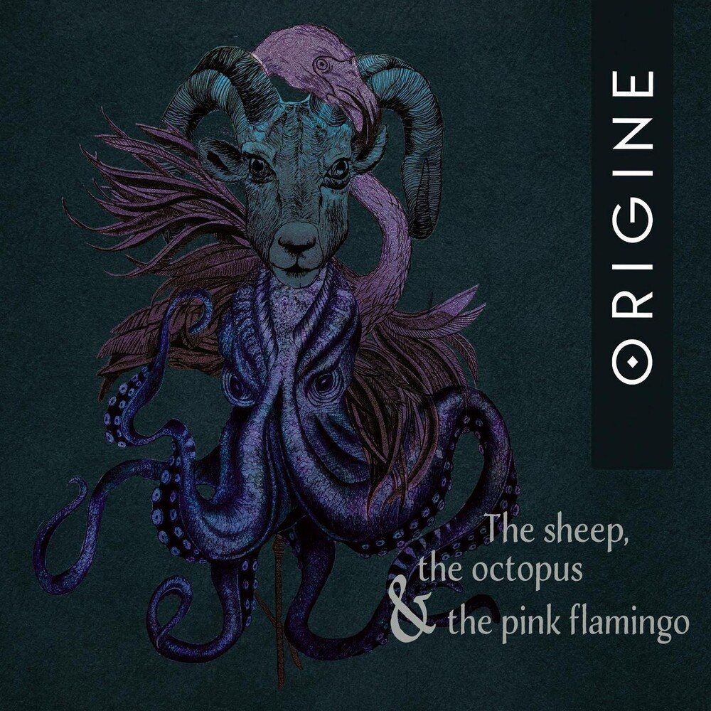 Origine - Sheep, The Octopus And The Pink Flamingo