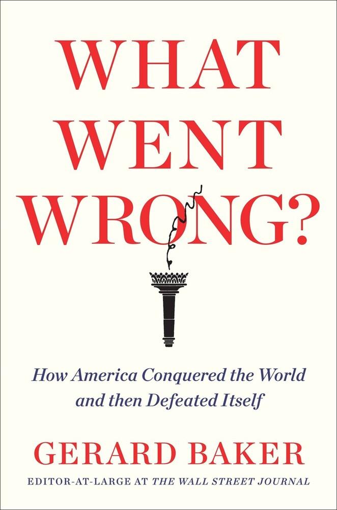Gerard Baker - What Went Wrong (Hcvr)