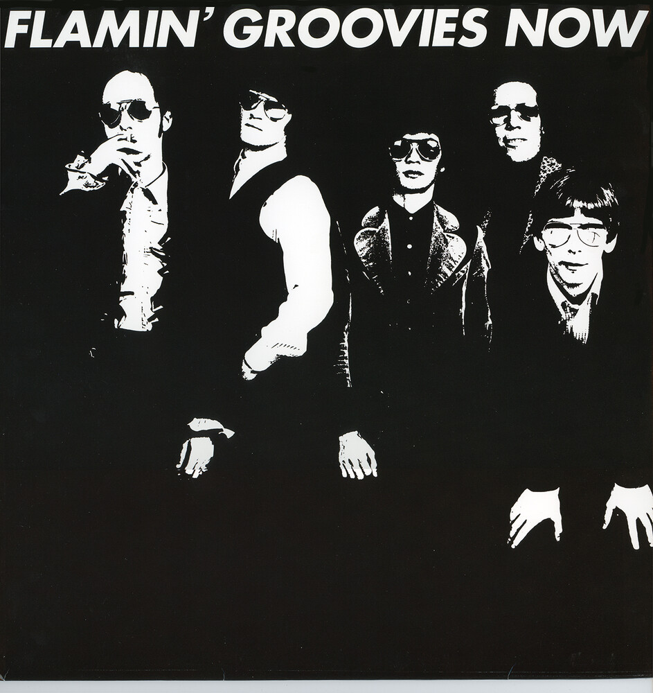 Flamin Groovies - Now