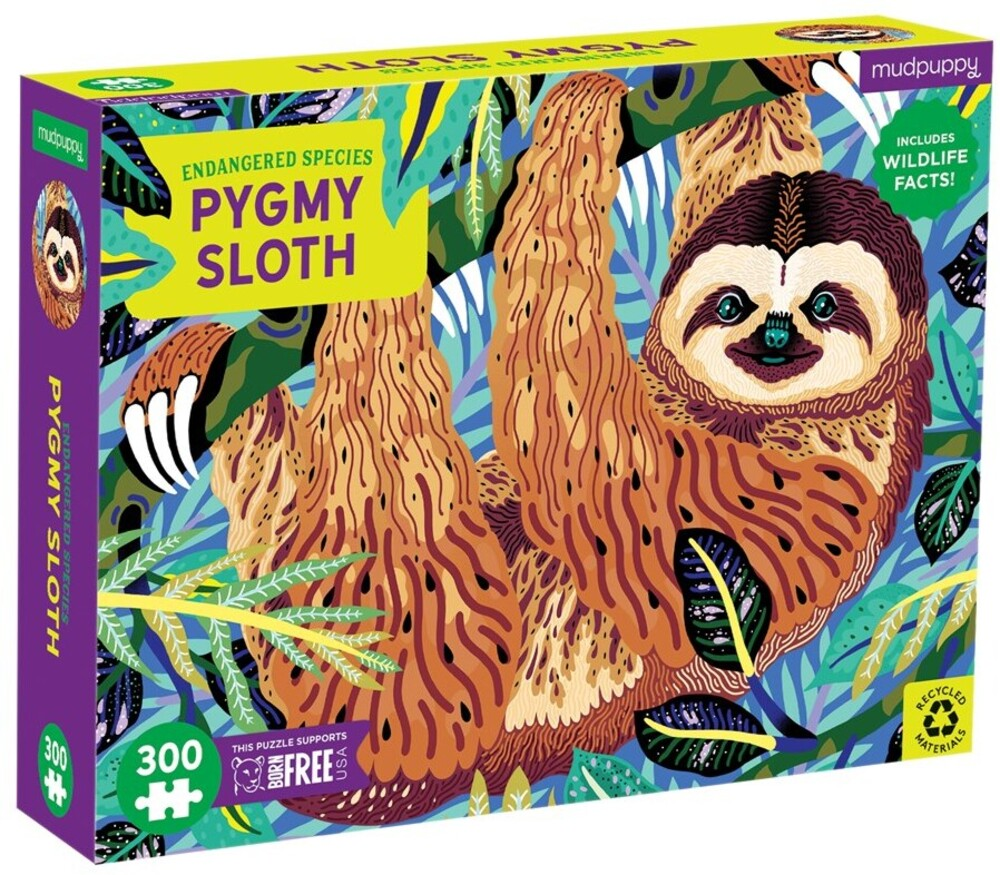 - Pygmy Sloth Endangered Species 300 Piece Puzzle