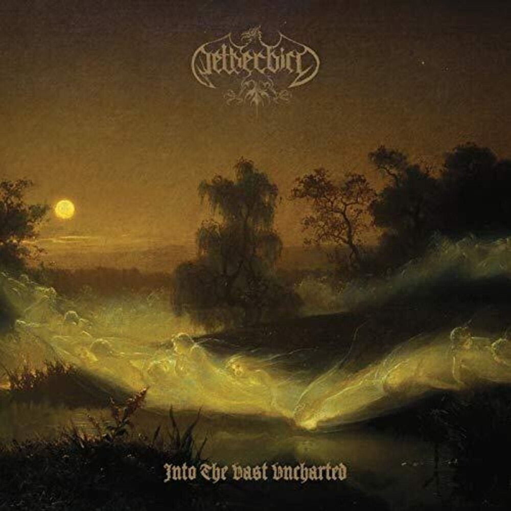 Netherbird - Into The Vast Uncharted [180 Gram] (Post)