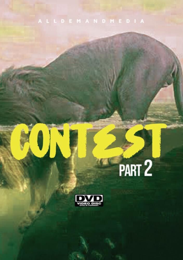 - Contest 2