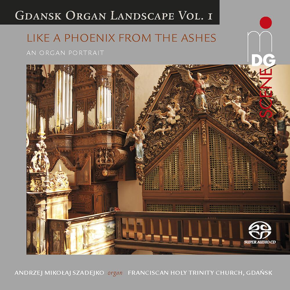Gdansk Organ Landscape 1 / Various Hybr - Gdansk Organ Landscape 1 / Various (Hybr)